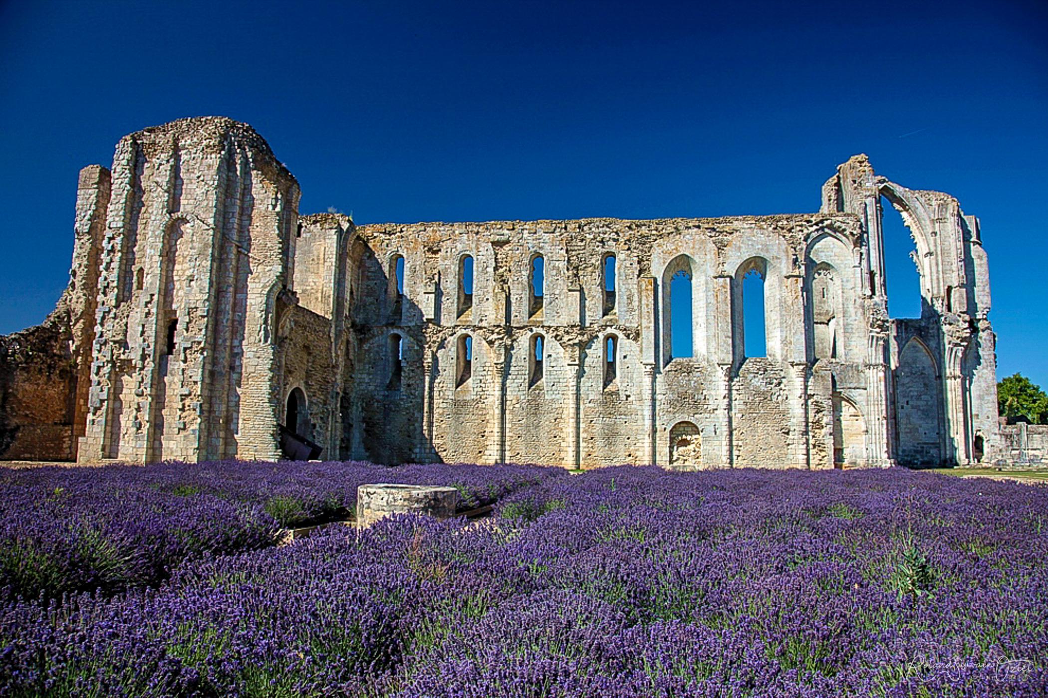 Maillezais et son Abbaye
