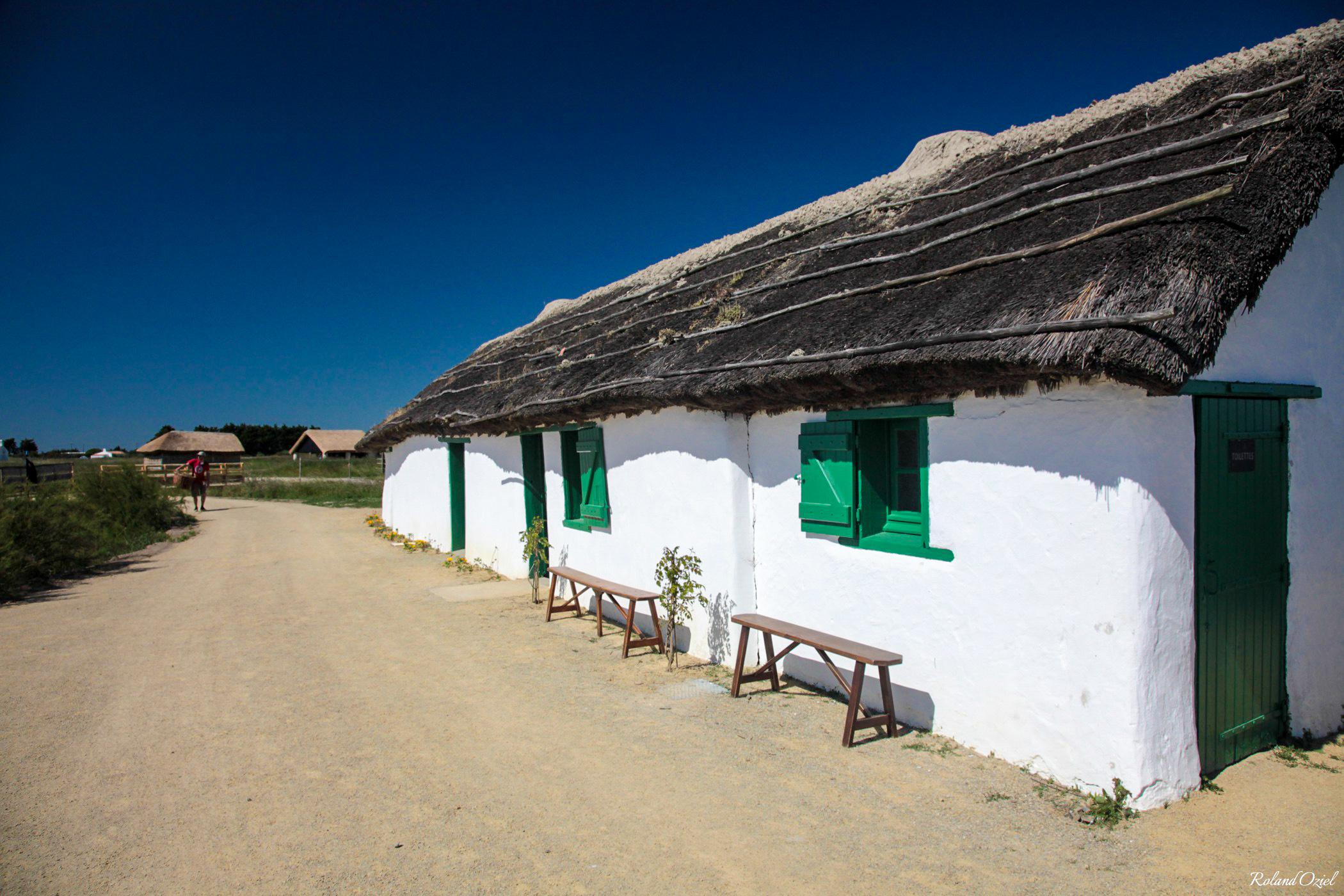 Eco musée du Daviaud à la Barre de Monts en Vendée
