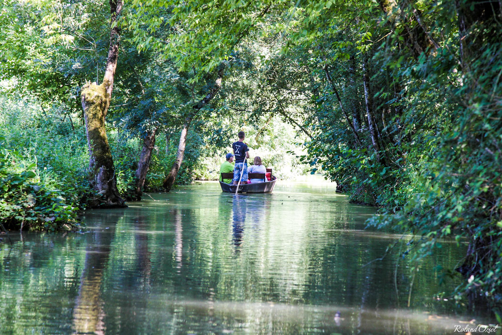 balade en barque au coeur de la Venise Verte