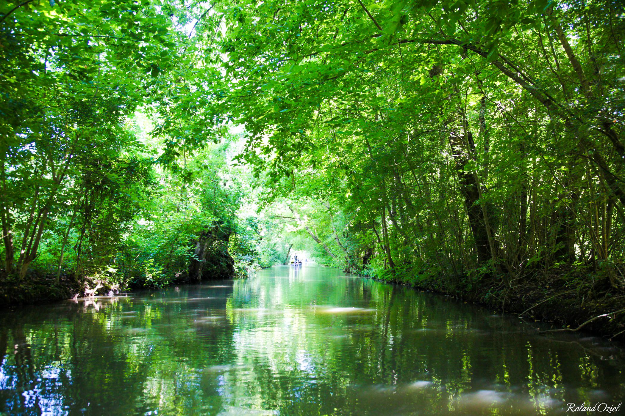 Pêcher dans la Marais Poitevin sur les canaux de la Venise Verte en Vendée
