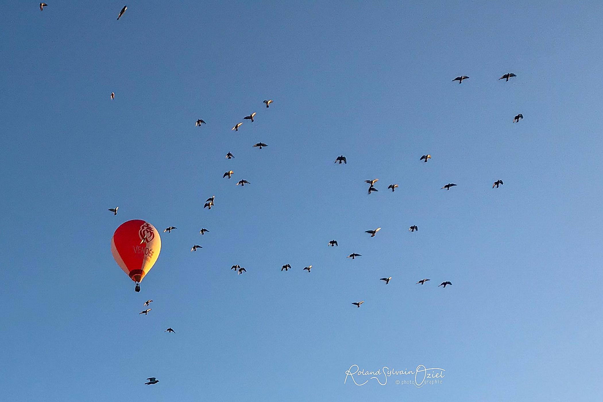 Survolez la Vendée en montgolfière