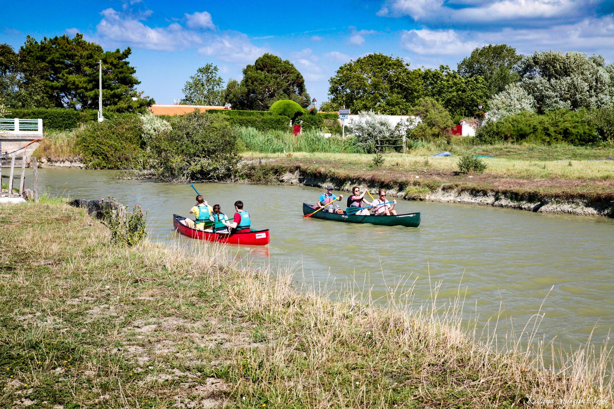 La Route du Sel vous emmène au travers du marais breton vendéen en canoë ou en vélo
