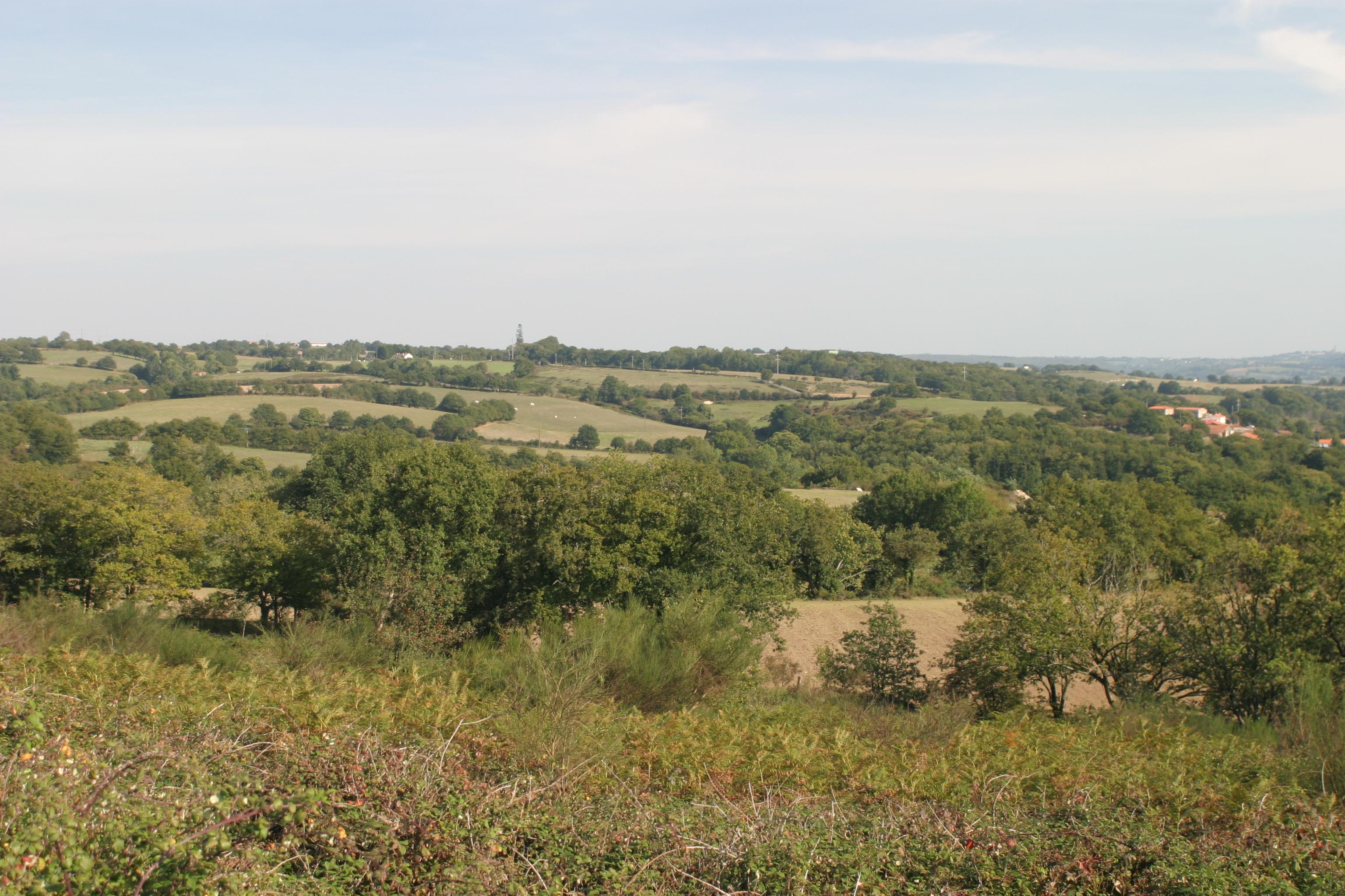 Vue sur la vallée et le bocage des Herbiers à expérimenter pendant vos vacances en camping en Vendée