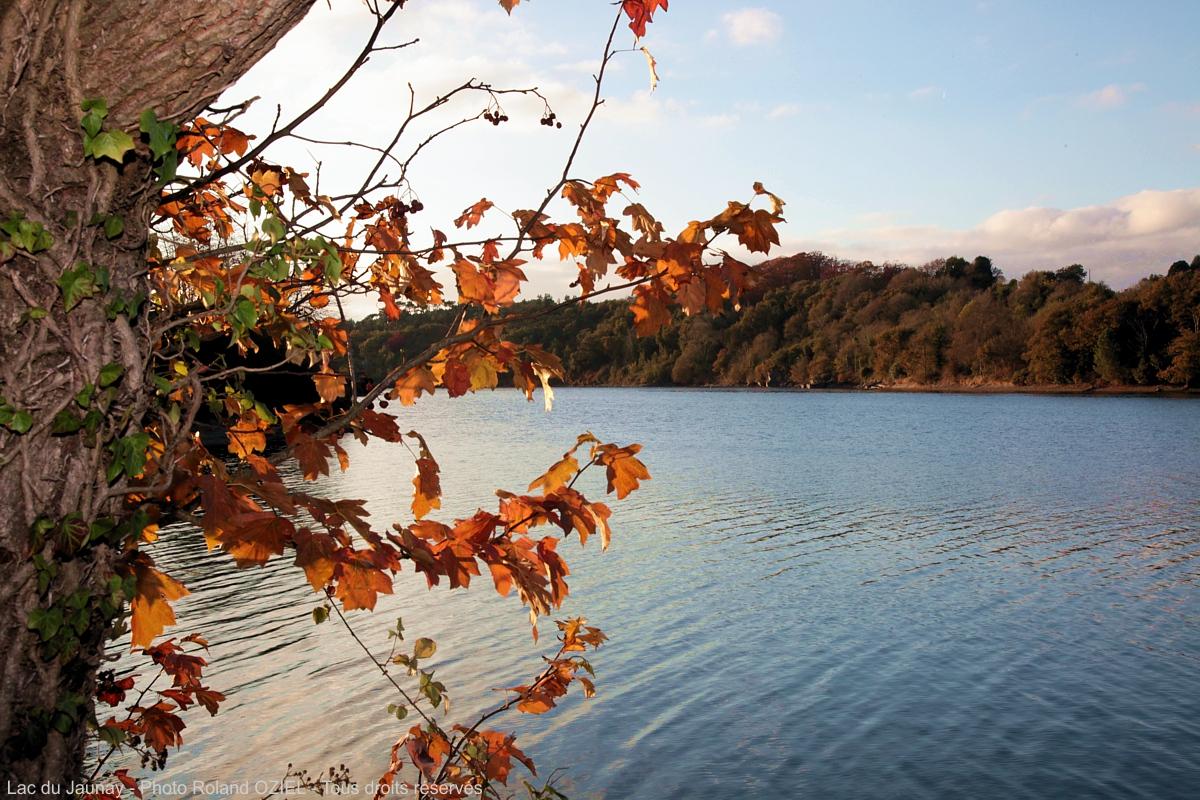 lac de Vendée