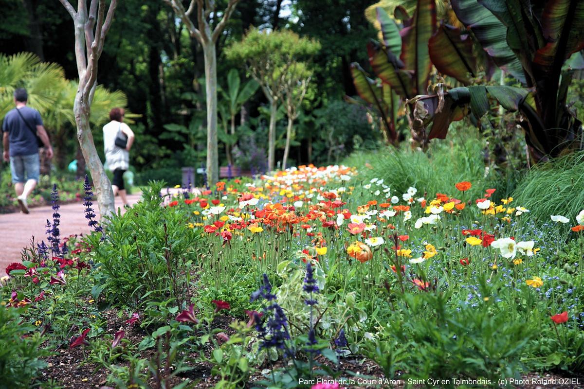 Les jardins et parcs à visiter dans le Sud-Vendée