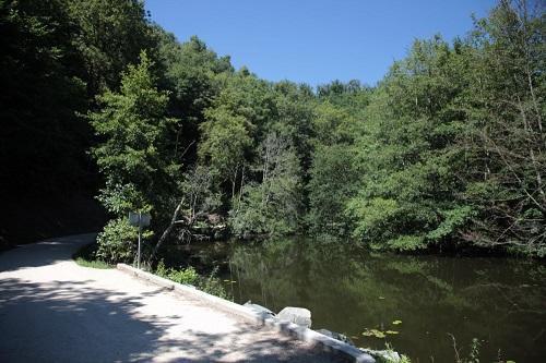 marais poitevin près de Fontenay-le-Comte