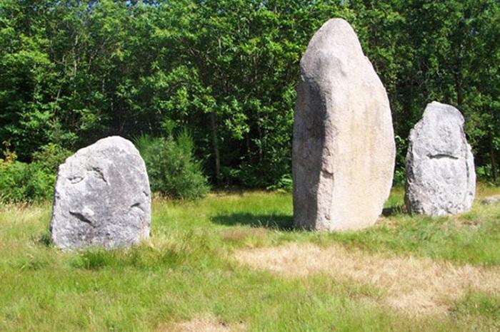 les mégalithes (menhirs) Avrillé 85