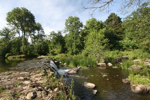 paysage Mareuil sur Lay près du camping