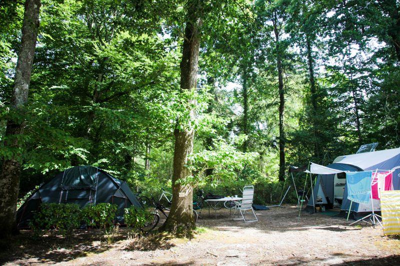 Camping au vert en Vendée pour les amoureux de la nature