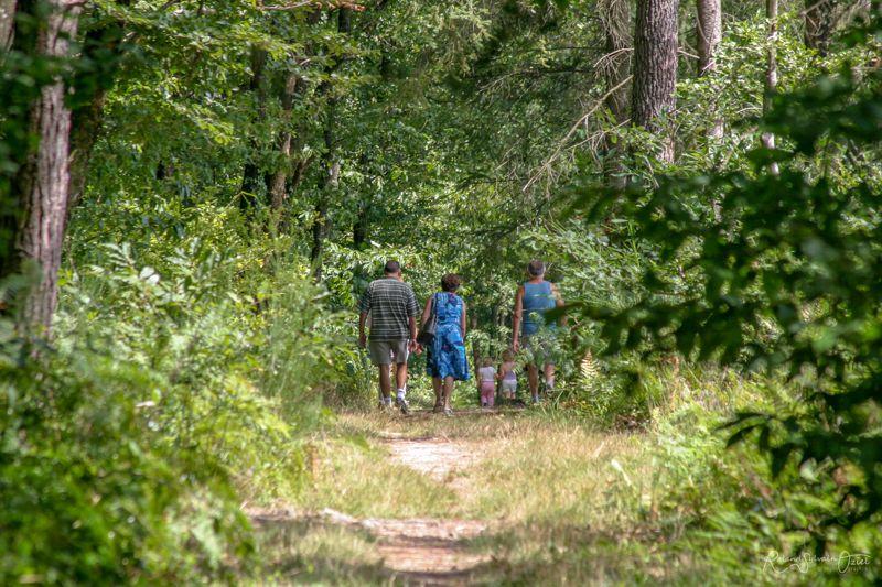 Camping pour les amoureux de la nature