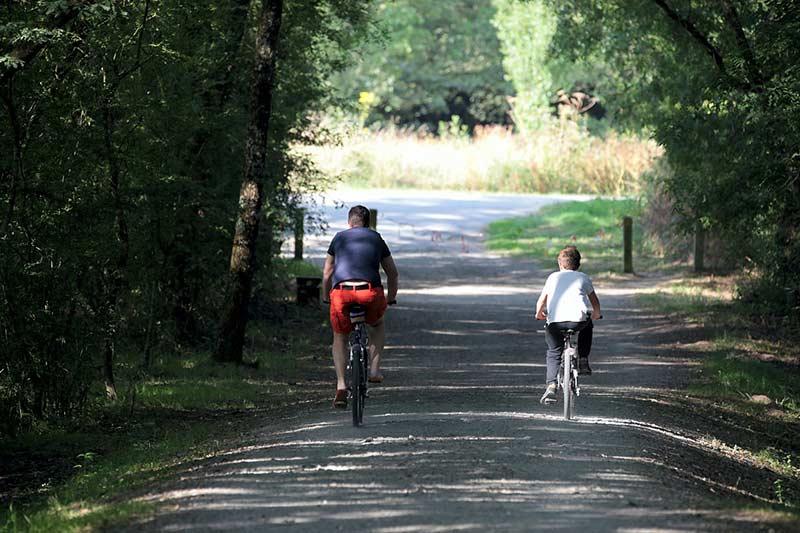 Camping Pistes cyclables & sentiers pédestres en Vendée