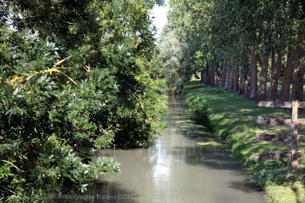 Arcais et les canaux du marais poitevin