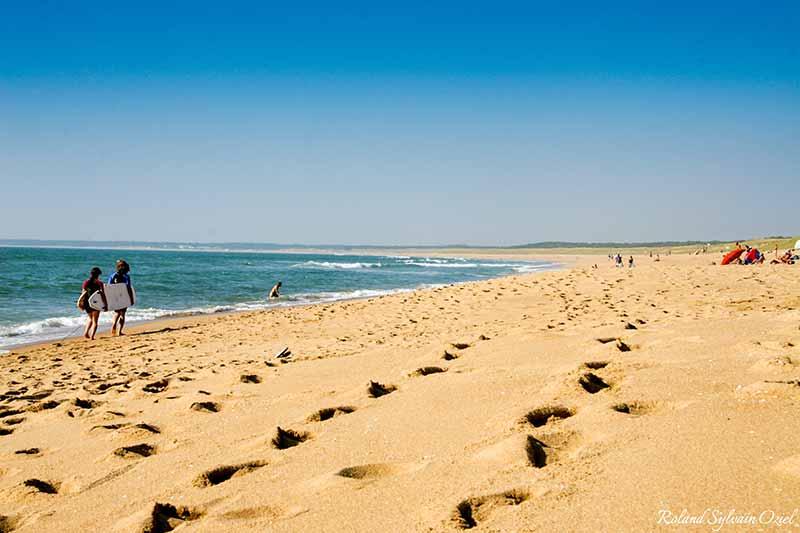 plage propre et écologique en Vendée